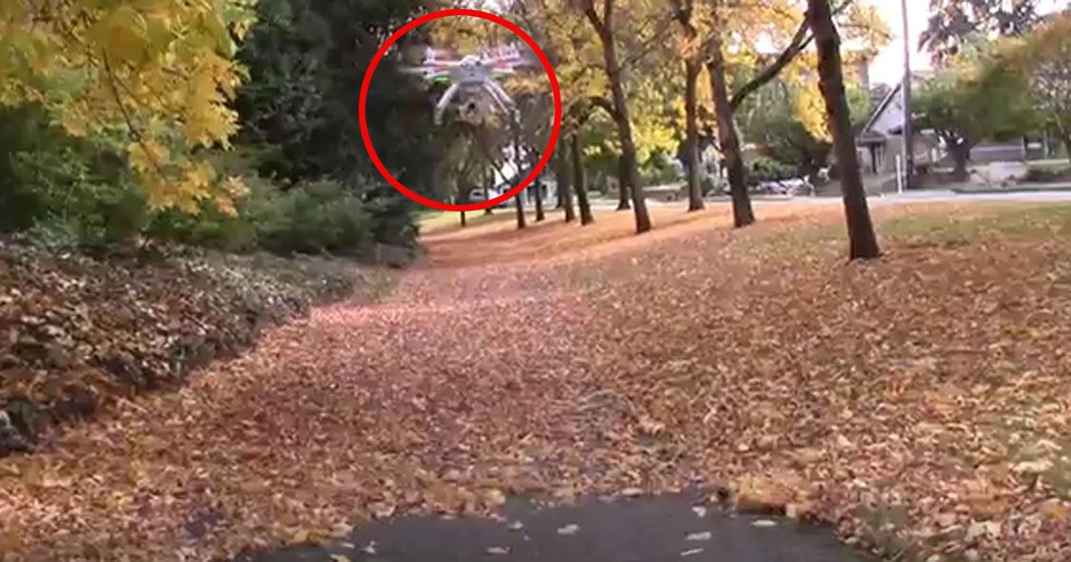 So macht Laubblasen im Herbst richtig Spaß!