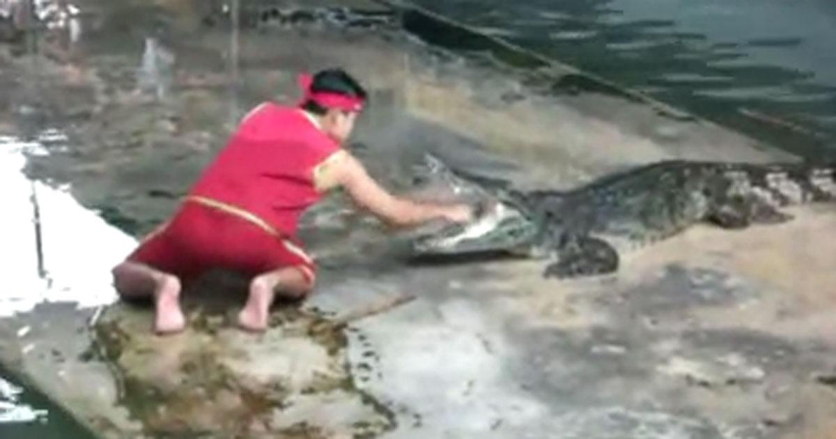 Er greift dem Krokodil in den Rachen und plötzlich passierte DAS.