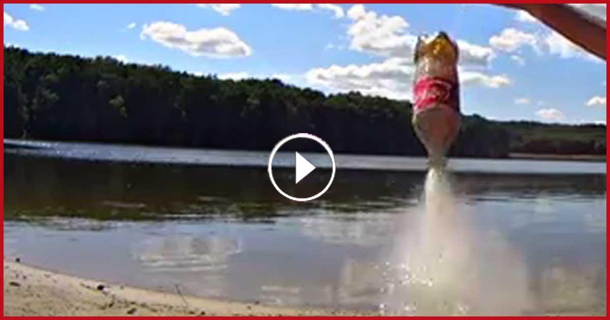 Diese 2 Typen aus der Ukraine schießen eine Rakete mit Hilfe einer Cola ab!