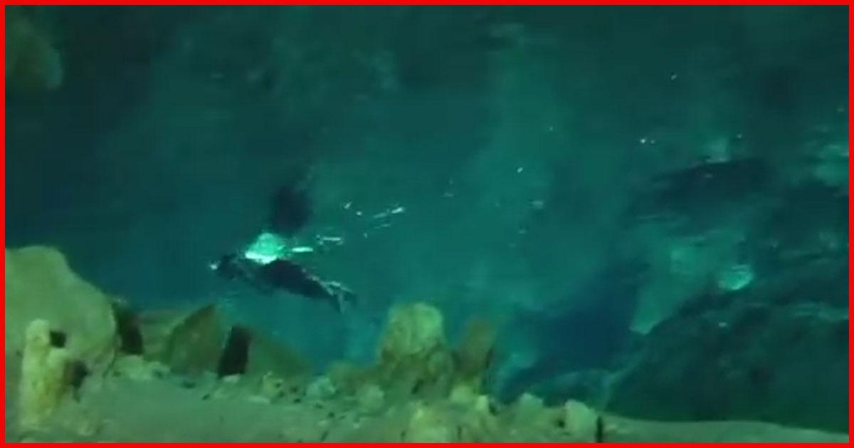 Spektakuläre Aufnahmen einer Unterwasser-Höhle. Dos Ojos, Yucatan, Mexico