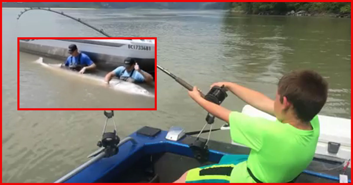 Neunjähriger fängt hat einen ganz dicken Fisch mit der Angel